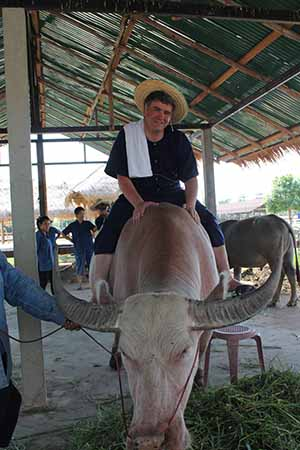 Irish travel writer Eoghan Corry of Travel Extra on a buffalo at Dr Prasert's Organic Agriculture Project, Sukhothai Airport on the pre-fam prior to Thailand Travel Market, Monday June 3 2013