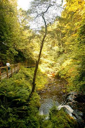 Glenariff Waterfall is at Glenariff forest park in the Glens of Antrim.