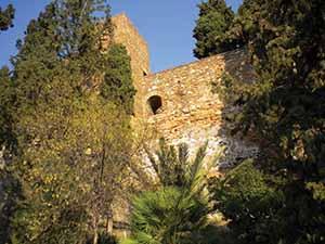 Malaga 292