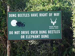 S Africa sign dung beatles have right of way