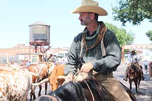 Stockyard parade_9683
