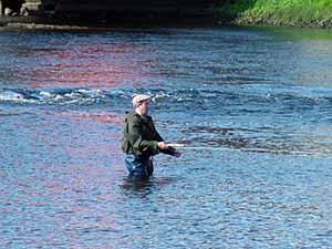 Westport Fisherman in Carrowbeg River