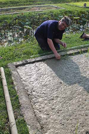 Irish travel writer Eoghan Corry of Travel Extra planting rice at Dr Prasert's Organic Agriculture Project, Sukhothai Airport on the pre-fam prior to Thailand Travel Market, Monday June 3 2013