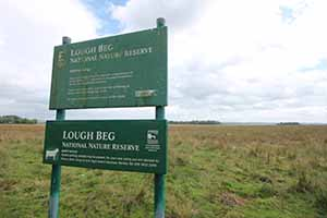 lough beg sign_3409