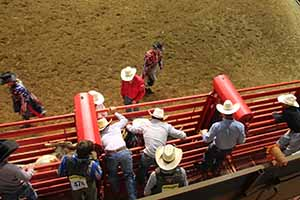 rodeo_9703