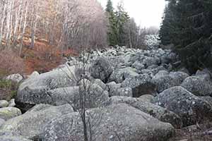 stone river_8636
